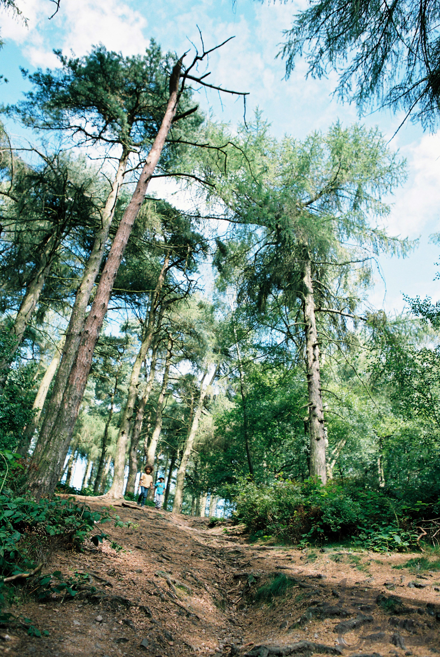 The Smalls, Lickey Hills, August 2014 - Film P160